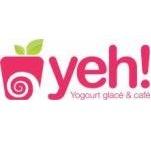 Franchise YEH! YOGOURT GLACE ET CAFE