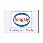 Franchise Fongaly Gestion