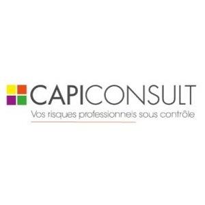 Franchise CAPI CONSULT