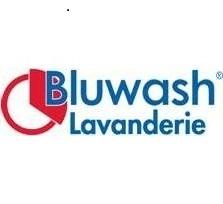 Franchise Bluwash