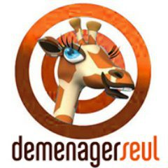 Franchise DEMENAGERSEUL