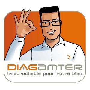 Franchise Diagamter