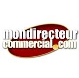 Franchise Mondirecteurcommercial