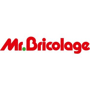 Franchise Mr. Bricolage logo