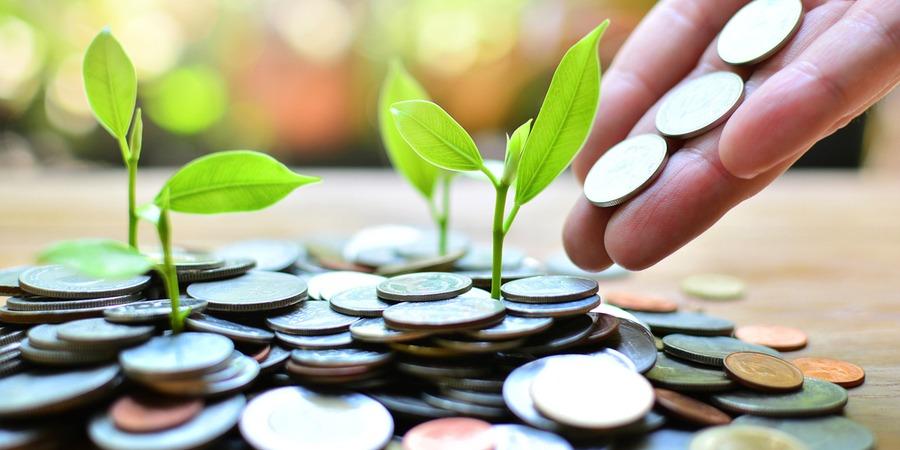 Combien coûte une franchise : l'investissement global