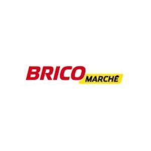 Logo franchise Bricomarché