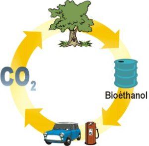 Bioéthanol, source d'énergie d'origine vivante végétale