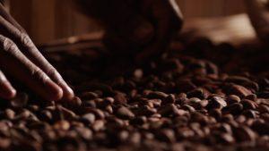 Leonidas, du chocolat 100 % pur beurre de cacao