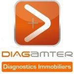 FRanchise Diagamter logo