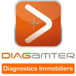 Franchise Diagamter logo