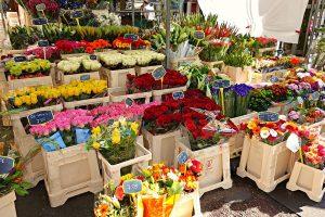 Le marché de la fleur se porte plutôt bien