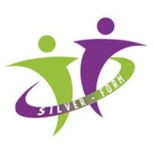 logo Silver Form