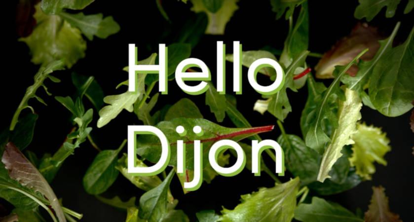 Une nouvelle franchise Eat Salad débarque à Dijon