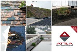 contrat entretien toit attila franchise