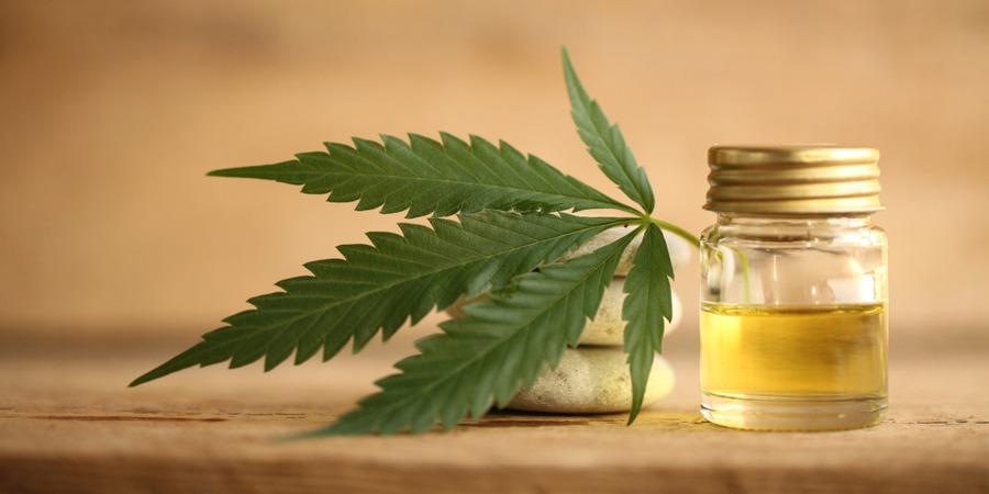 Franchise CBD : Focus sur le marché du cannabis légal en France !