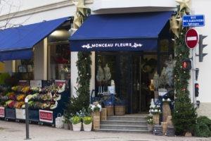 franchise monceau fleurs Strasbourg