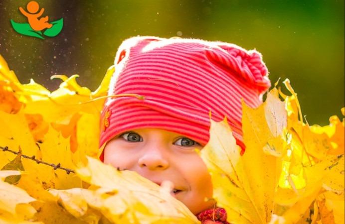 Le réseau Baby Trees a enregistré d'importantes évolutions durant l'année 2020