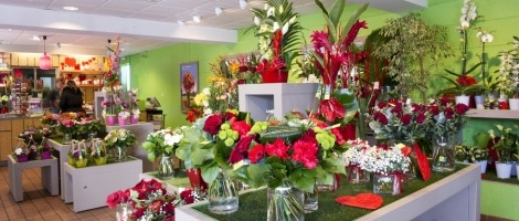 interieur-magasin-franchise-jardin-des-fleurs