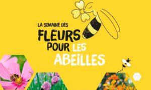 Le Jardin des Fleurs participe à La Semaine des Fleurs pour les Abeilles