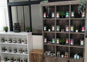 Une nouvelle franchise Green Care ouvre ses portes à Châteaugiron